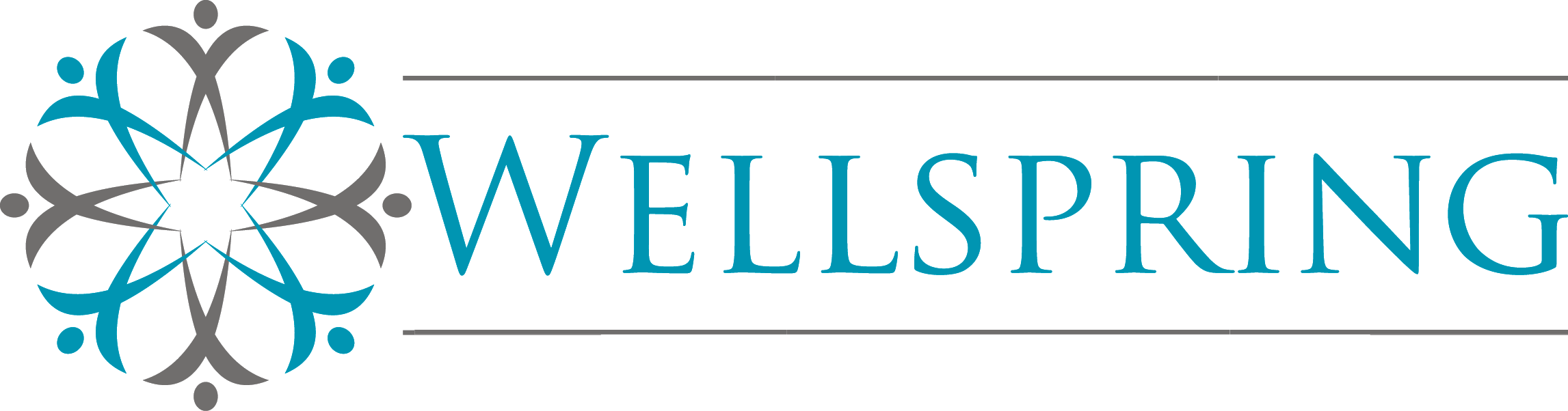 wellspring Care Services